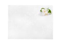 Подложки за хранене » Подложка за хранене Dilios Жакард Бяло