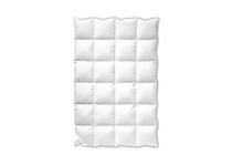 Олекотени завивки със силиконов пух » Завивка Dilios Зимна Pure Cotton